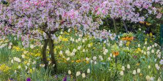 garden ideas flower and vegetable garden plans