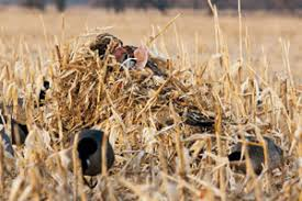 Layout Hunting Blinds Northern Flight Waterfowl Collection Duck Hunting Gear Cabela U0027s