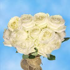 global roses stem big white roses global