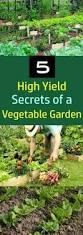 5345 best vegetable garden images on pinterest vegetable garden