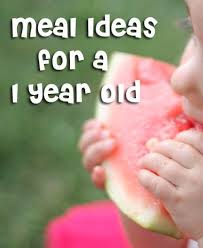 1000 images about baby and toddler food ideas on pinterest