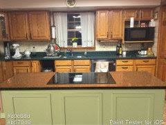 black kitchen cabinets in log cabin painting kitchen cabinets in log home