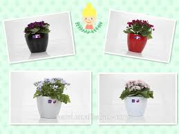 unique plant pots smart plastic desktop mini unique plant pots for plants buy