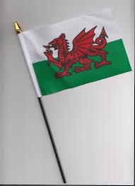 Plain Flags For Sale Amazon Co Uk Flags U0026 Pennants Sports U0026 Outdoors