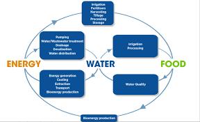 nexus future earth water energy food nexus future earth