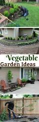 home veggie garden ideas 25 beautiful small vegetable gardens ideas on pinterest small