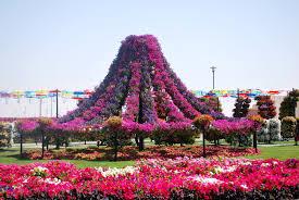 garden inspiration the dubai miracle garden trillium