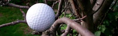 golf tips for beginners working around trees 3balls