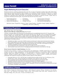 Sample Resume For Marketing Executive Position by 100 High Profile Resume Format Free Resume Templates Ms