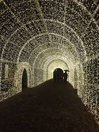 vancouver christmas light maze blogmas guide to christmas festivities in vancouver or good