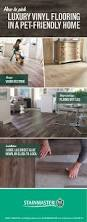 Removing Scratches From Laminate Flooring Best 25 Best Laminate Floor Cleaner Ideas On Pinterest Laminate