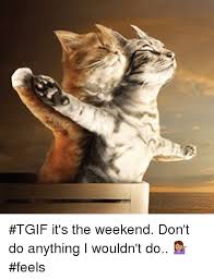 Funny Tgif Memes - tgif it s the weekend don t do anything i wouldn t do feels