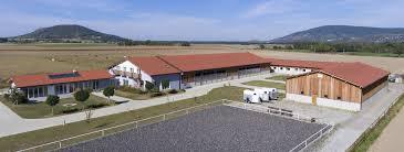 hã llen selbst designen hallenbau maschinenhalle reithalle photovoltaikhalle getreidelager