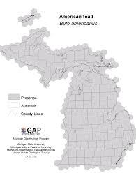 Michigan State Map by Michigan Gap