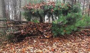 Ground Blind Reviews How To Make A Ground Blind For Whitetail Deer Hunting