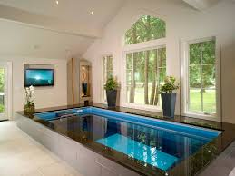 endless pool in a home spa infused with a relaxing setting of art