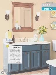 paint ideas bathroom bathroom view bathroom cabinet paint ideas decorate ideas fresh