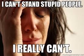 Stupid People Meme - my stupid people meme by diamondtron01 on deviantart