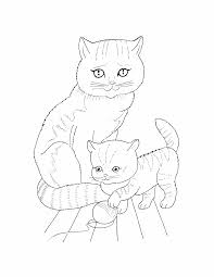 pet coloring pages chuckbutt com