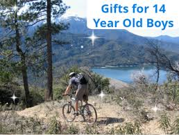best gifts and toys for 14 year old boys favorite top gifts