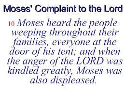 Moultonborough Business Dir by Feb 17 23 Israelites Complain