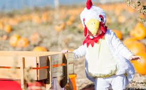 halloween on the farm 8 diy costume ideas modern farmer