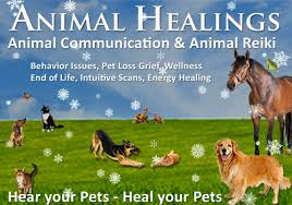 prayers for thanksgiving day prayers for lost sick and dying pets