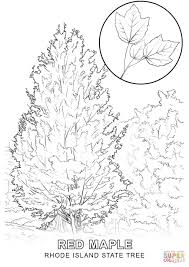 pine tree coloring pages rhode island state tree coloring page free printable coloring pages