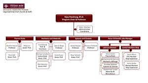texas a u0026m university at qatar organizational chart