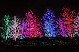 decoration lights in bulk netting outdoor