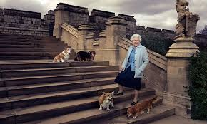 the queen u0027s pet corgi has died