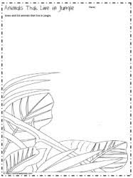 tropical rainforest worksheetsworksheets