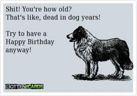 sarcastic birthday wish i ecards