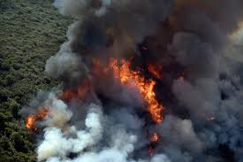 Wildfire Northern Colorado by The Latest Curfew Imposed In Fire Area As Looting Feared