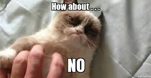 Ummm No Meme - grumpy cat how about no weknowmemes