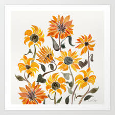 sunflower pictures sunflower prints society6