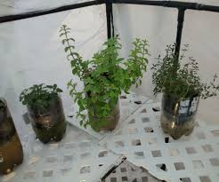 5 minute self watering planters 12 steps