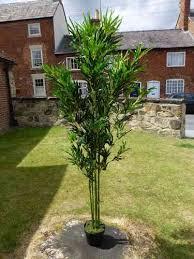 artificial trees uk gardens co uk