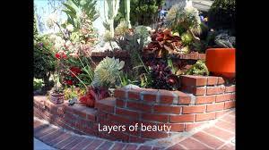 frank u0027s magical succulent garden youtube