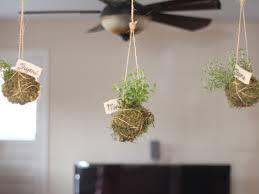 home decor brown classic round premium kitchen window planter