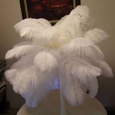 white ostrich feathers wedding party decoration large ostrich