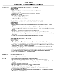 sample of executive resume product manager banking resume samples velvet jobs
