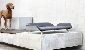 Most Comfortable Sleeper Sofas Daybeds Amazing Wonderful Modern Lounge Daybed Contemporary