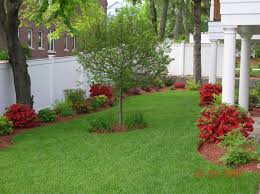 Landscaped Backyard Ideas by Landscape Design On A Budget Perfect Landscaping House Designs