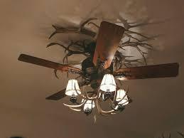 Menards Ceiling Fans With Lights Ceiling Fan Deer Antler Light Kit Menards Contemporary Amazing