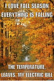 Fall Memes - i love fall season everything is falling the temperature leaves my