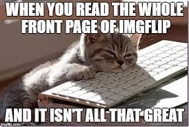Keyboard Cat Meme - bored keyboard cat meme generator imgflip