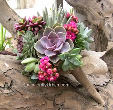 succulent bouquet succulent wedding bouquet jackie succulents