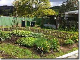 A North Island New Zealand Permaculture Tour - Backyard permaculture design
