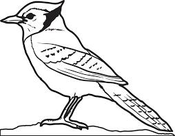 100 ideas blue bird coloring pages on gerardduchemann com